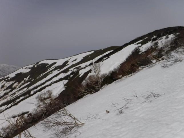 融雪進む平標