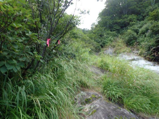 大滝の巻道は踏み跡明瞭。途中にある間違った踏み跡(?)をたどると沢から離れてしまうので注意。