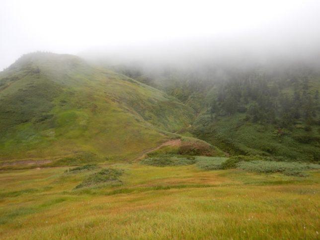 巻機山山頂へ行くつもりでしたが雨が降り出しました。
